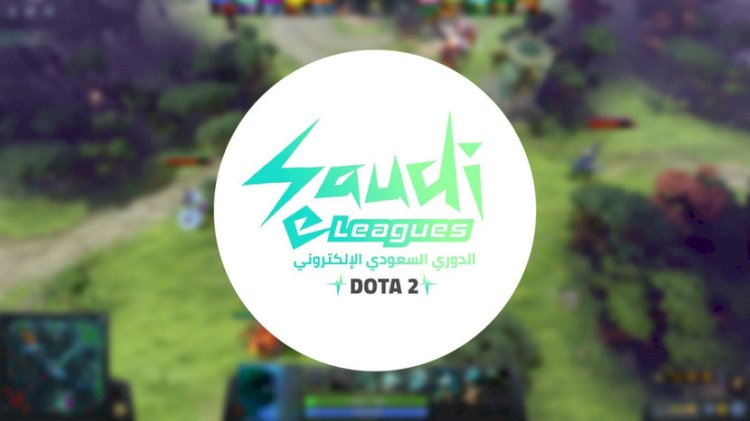 Esports x Saudi Arabia |  Pro-esports League with $500,000 prizes to increase the number of Professional Gamers