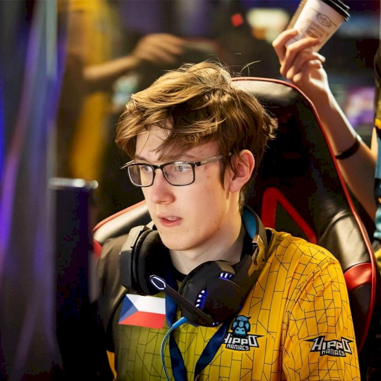 Dota 2: NIP SabeRLighT receives death wishes from bettors